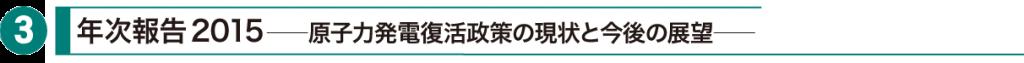 原子力市民委員会 年次報告2015